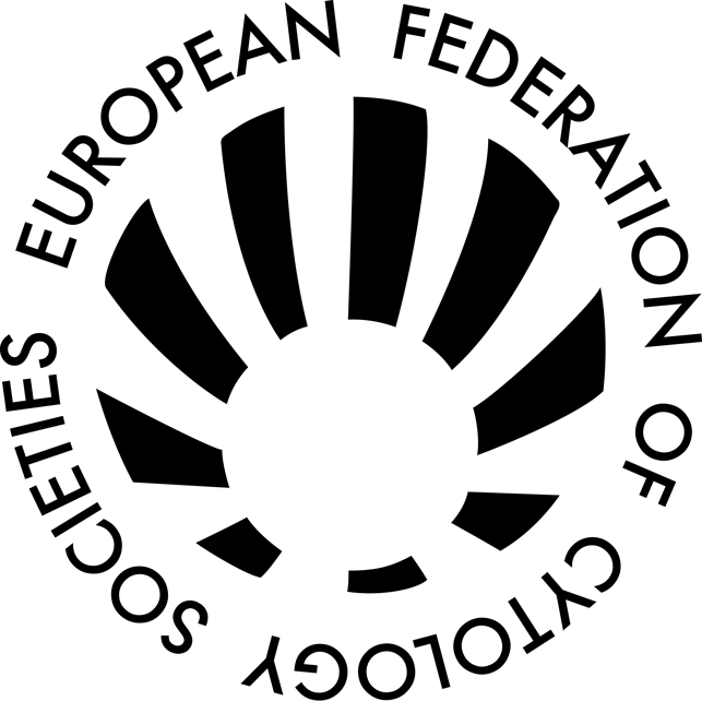 EFCS HD logo black