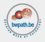 BelgianWeek_logo1