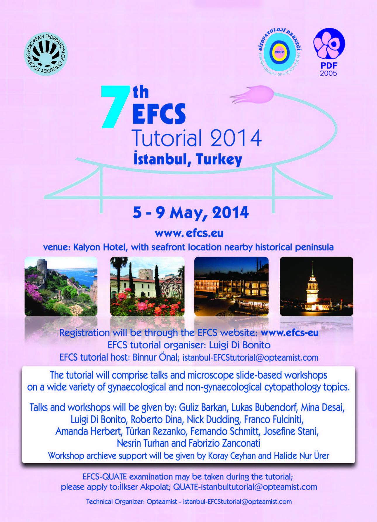7 EFCS tutorial