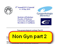 Tutorial handouts non gynecolocic cytology part 2